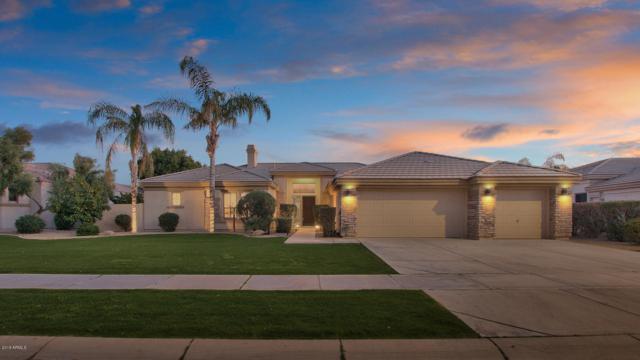 1761 W Lynx Way, Chandler, AZ 85248 (MLS #5860702) :: Conway Real Estate