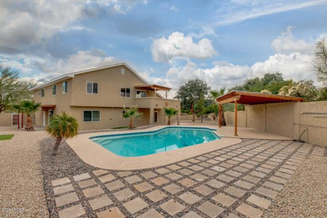 14220 N Blackfoot Lane, Fountain Hills, AZ 85268 (MLS #5860718) :: Yost Realty Group at RE/MAX Casa Grande