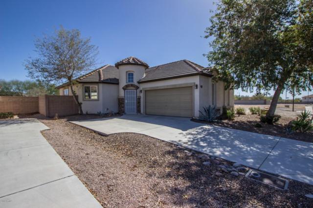 3851 N 293RD Drive, Buckeye, AZ 85396 (MLS #5860952) :: The Sweet Group