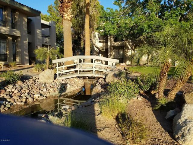 5213 N 24TH Street #204, Phoenix, AZ 85016 (MLS #5861085) :: Arizona 1 Real Estate Team