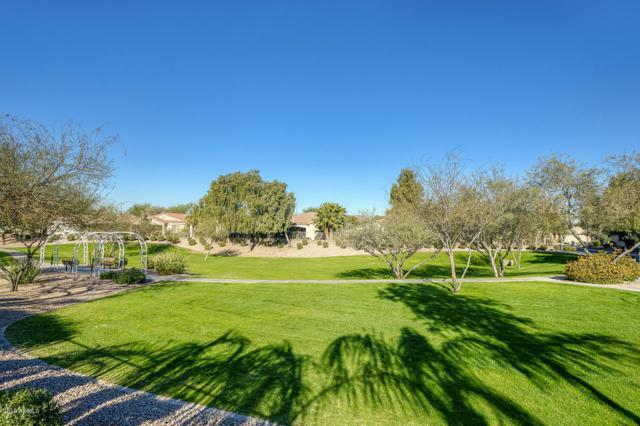4288 E Ficus Way, Gilbert, AZ 85298 (MLS #5861148) :: Revelation Real Estate