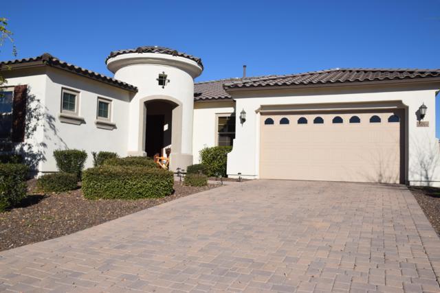 14774 W Georgia Drive, Surprise, AZ 85379 (MLS #5861160) :: Phoenix Property Group