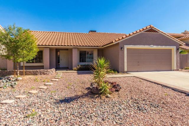 8429 S Kenwood Lane, Tempe, AZ 85284 (MLS #5861416) :: The Jesse Herfel Real Estate Group