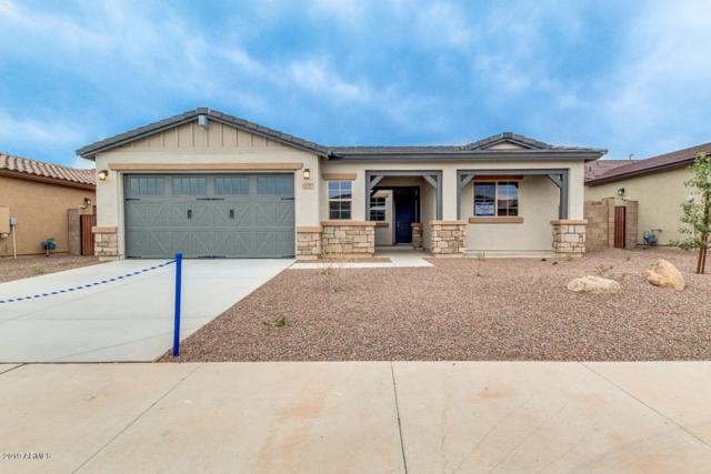 17137 W Laurie Lane, Waddell, AZ 85355 (MLS #5861427) :: Occasio Realty
