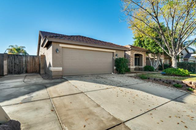 9737 E Jan Avenue, Mesa, AZ 85209 (MLS #5861588) :: RE/MAX Excalibur