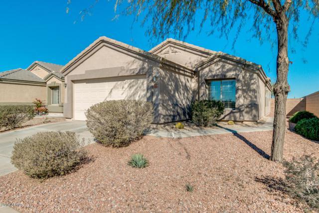 6528 E Escape Avenue, Florence, AZ 85132 (MLS #5861612) :: The W Group