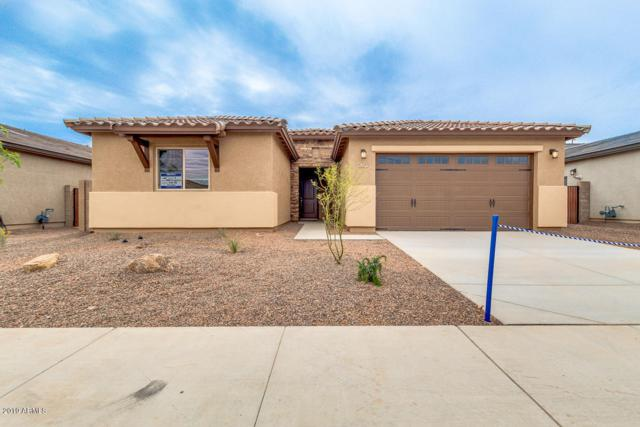 17133 W Laurie Lane, Waddell, AZ 85355 (MLS #5861757) :: Occasio Realty