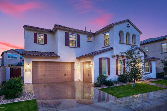 937 W Yosemite Drive, Chandler, AZ 85248 (MLS #5861815) :: The Daniel Montez Real Estate Group