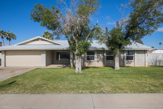 4610 E Andora Drive, Phoenix, AZ 85032 (MLS #5861837) :: Yost Realty Group at RE/MAX Casa Grande