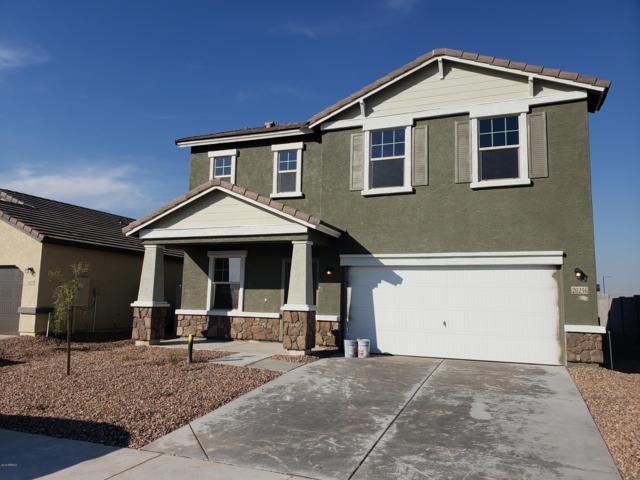 20216 W Mesquite Drive, Buckeye, AZ 85326 (MLS #5862560) :: RE/MAX Excalibur