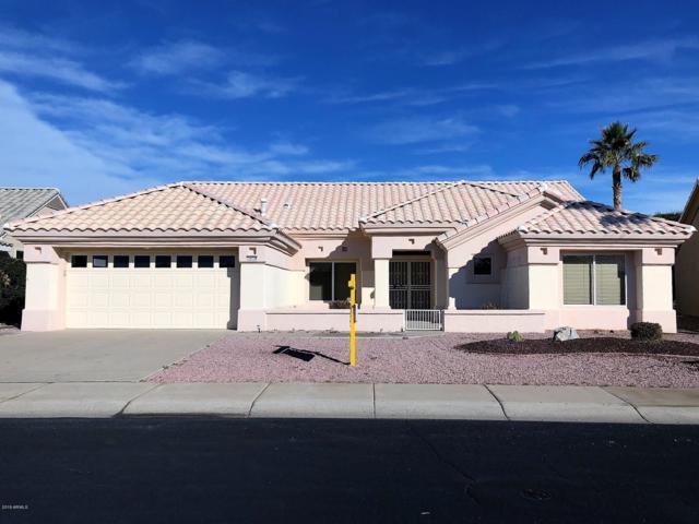 14738 W Via Montoya, Sun City West, AZ 85375 (MLS #5862599) :: RE/MAX Excalibur