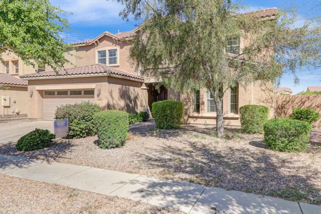 2978 E Lynx Way, Gilbert, AZ 85298 (MLS #5862790) :: Revelation Real Estate