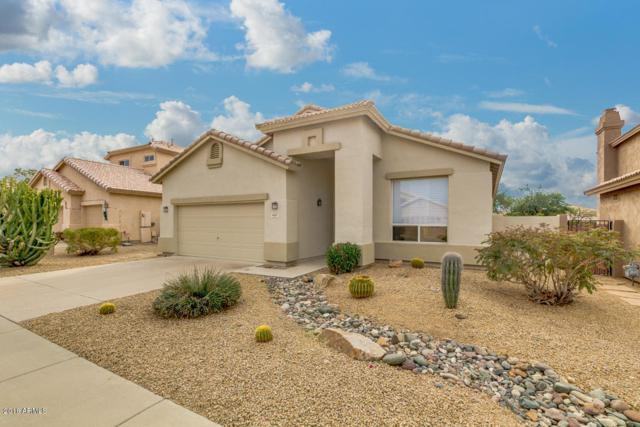 4615 E Roy Rogers Road, Cave Creek, AZ 85331 (MLS #5862873) :: The Pete Dijkstra Team