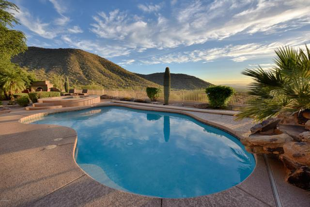 11399 E Winchcomb Drive, Scottsdale, AZ 85255 (MLS #5862925) :: The Laughton Team