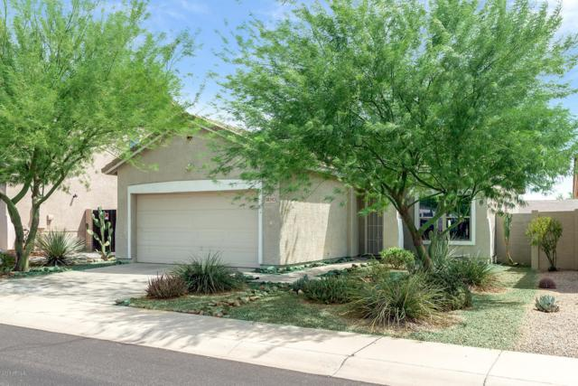 18393 E El Amancer, Gold Canyon, AZ 85118 (MLS #5863028) :: The Bill and Cindy Flowers Team