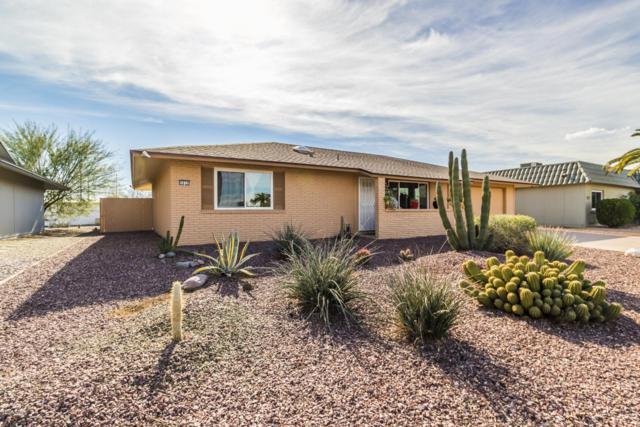 9839 W Wrangler Drive, Sun City, AZ 85373 (MLS #5863238) :: Yost Realty Group at RE/MAX Casa Grande