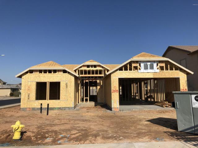 11216 E Shelley Avenue, Mesa, AZ 85212 (MLS #5863364) :: Kortright Group - West USA Realty