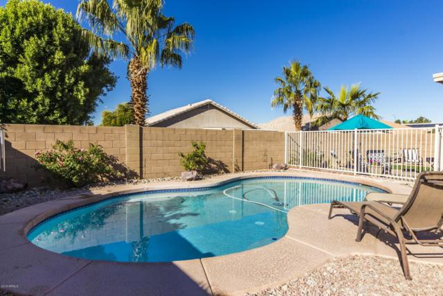 20502 N 92ND Lane, Peoria, AZ 85382 (MLS #5863447) :: Lifestyle Partners Team