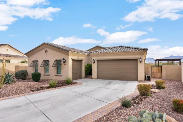 12257 S 182nd Avenue, Goodyear, AZ 85338 (MLS #5863904) :: The Daniel Montez Real Estate Group