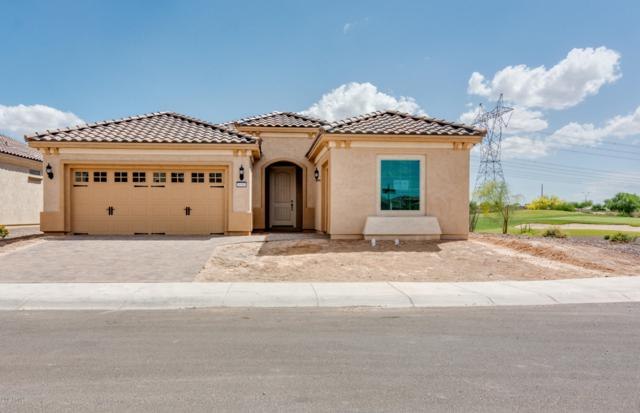 26503 W Zachary Drive, Buckeye, AZ 85396 (MLS #5864681) :: The Property Partners at eXp Realty