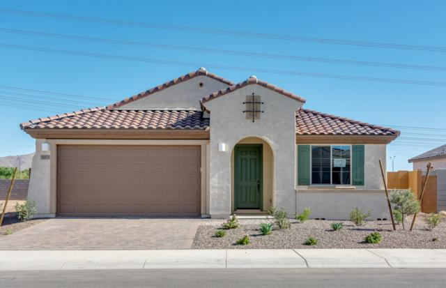 26073 W Matthew Drive, Buckeye, AZ 85396 (MLS #5864831) :: The Property Partners at eXp Realty