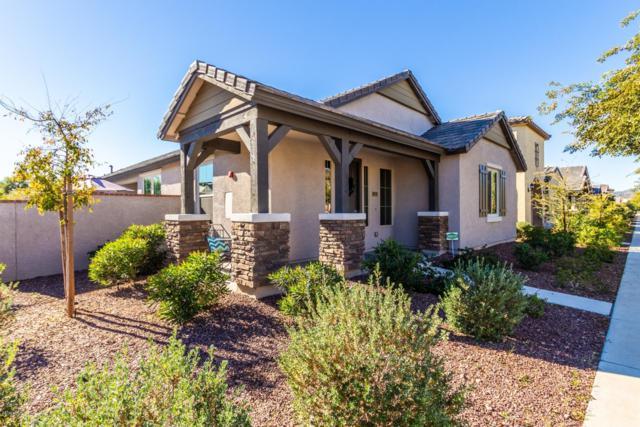 20719 W Legend Trail, Buckeye, AZ 85396 (MLS #5865756) :: RE/MAX Excalibur