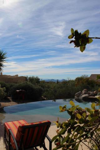 23238 N 94th Place Place, Scottsdale, AZ 85255 (MLS #5865907) :: Keller Williams Realty Phoenix