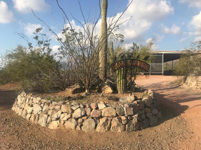 10650 E Jonquil Avenue, Gold Canyon, AZ 85118 (MLS #5865932) :: The Kenny Klaus Team