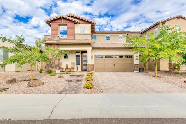 12818 W Caraveo Place, Peoria, AZ 85383 (MLS #5866674) :: Riddle Realty