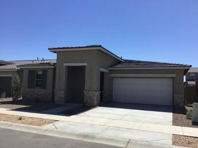 22525 E Stonecrest Drive, Queen Creek, AZ 85142 (MLS #5867240) :: Revelation Real Estate