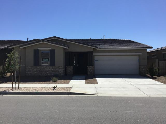 22476 E Sonoqui Boulevard, Queen Creek, AZ 85142 (MLS #5867392) :: Revelation Real Estate
