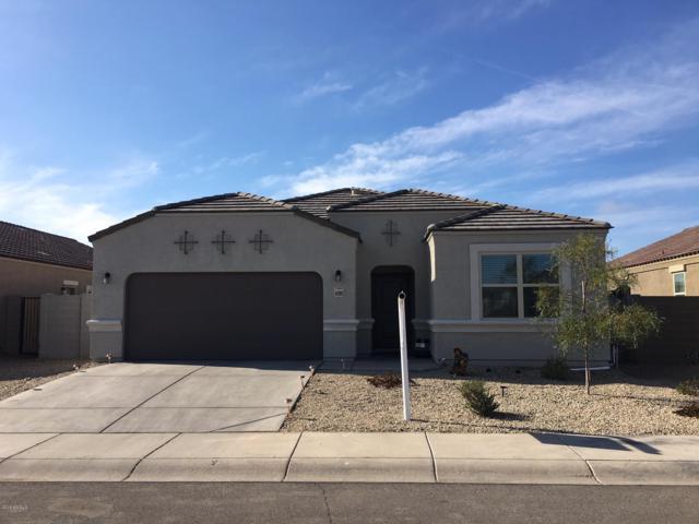 41989 W Rosa Drive, Maricopa, AZ 85138 (MLS #5867476) :: Revelation Real Estate