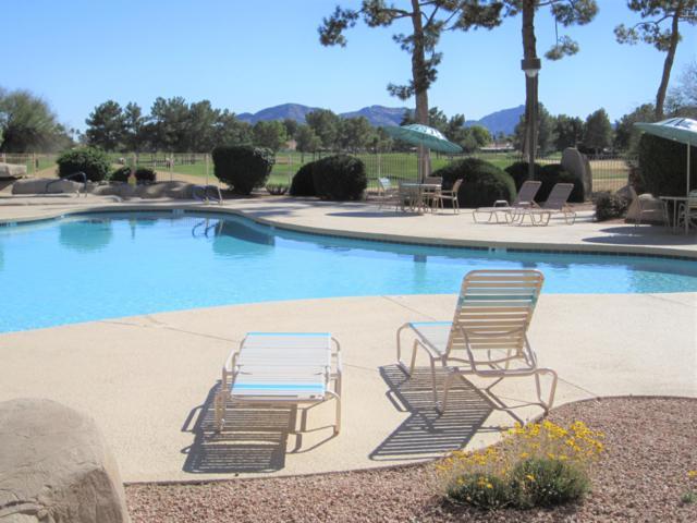 12212 N Paradise Village Parkway S #140, Phoenix, AZ 85032 (MLS #5867634) :: Arizona 1 Real Estate Team