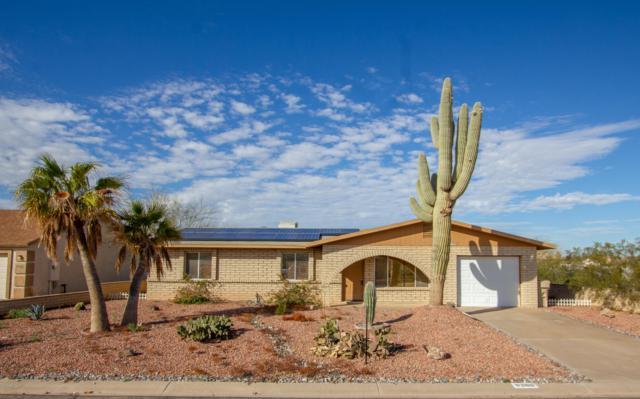 8388 W Teresita Drive, Arizona City, AZ 85123 (MLS #5867683) :: Yost Realty Group at RE/MAX Casa Grande
