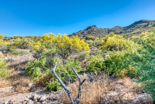 37284 N Nighthawk Way, Carefree, AZ 85377 (MLS #5867726) :: Riddle Realty Group - Keller Williams Arizona Realty