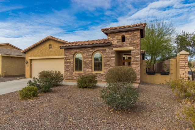 3428 E Ravenswood Drive, Gilbert, AZ 85298 (MLS #5867763) :: CC & Co. Real Estate Team