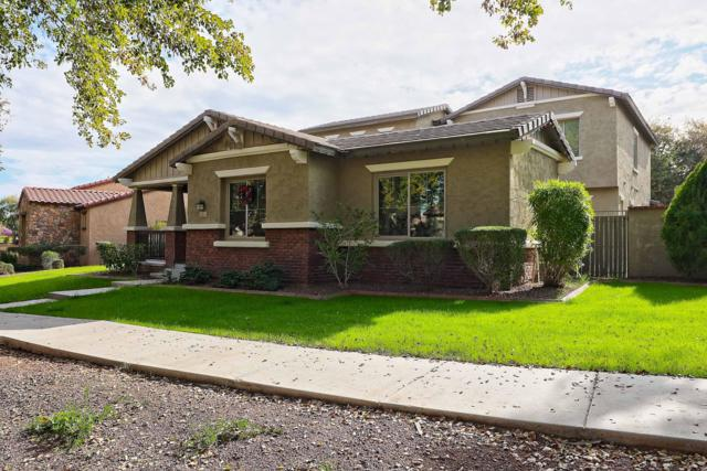 20917 W Prospector Way, Buckeye, AZ 85396 (MLS #5868072) :: Phoenix Property Group