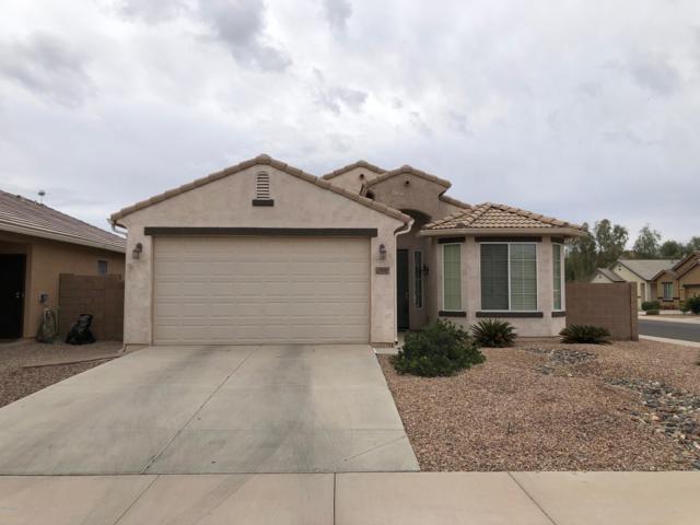10267 E Primrose Lane, Florence, AZ 85132 (MLS #5868386) :: The Property Partners at eXp Realty
