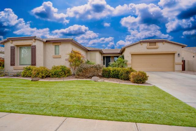 3197 E Blue Ridge Place, Chandler, AZ 85249 (MLS #5868642) :: The Everest Team at My Home Group