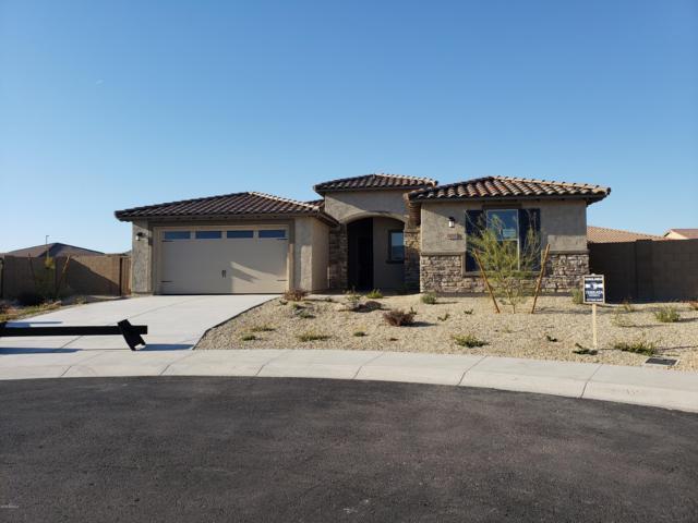 18252 W Goldenrod Street, Goodyear, AZ 85338 (MLS #5868696) :: CC & Co. Real Estate Team