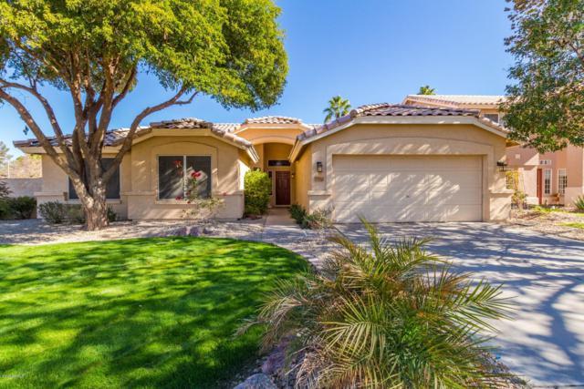 1391 N Alexis Drive, Gilbert, AZ 85234 (MLS #5868845) :: Gilbert Arizona Realty