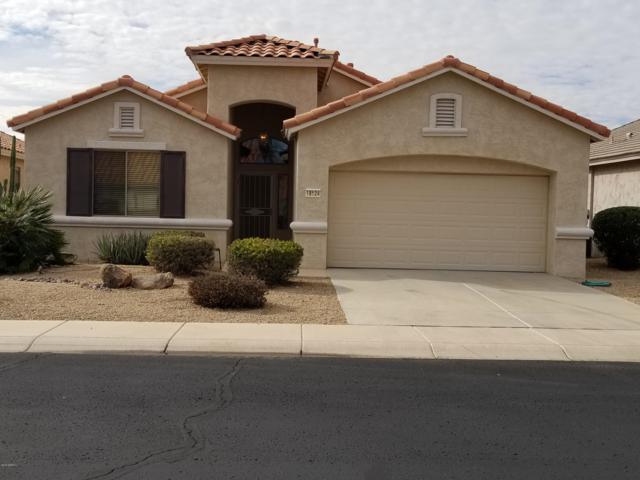 18124 N Coconino Drive N, Surprise, AZ 85374 (MLS #5869256) :: Brett Tanner Home Selling Team