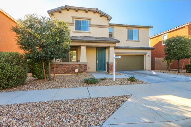 15555 W Jenan Drive, Surprise, AZ 85379 (MLS #5869622) :: Keller Williams Realty Phoenix