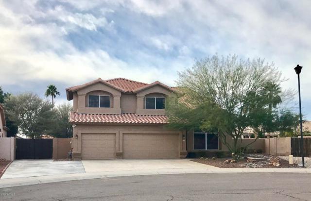 7836 W Taro Lane, Glendale, AZ 85308 (MLS #5869721) :: The Daniel Montez Real Estate Group
