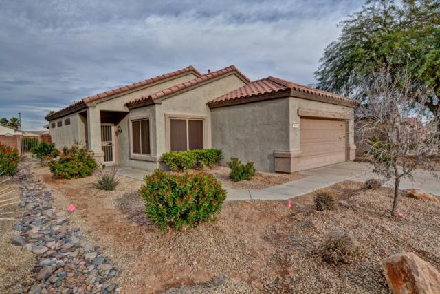 18441 N Gila Springs Drive, Surprise, AZ 85374 (MLS #5870288) :: The Sweet Group