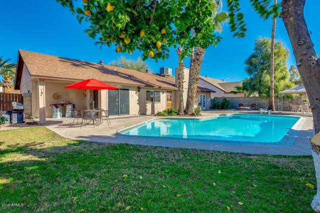 6015 W Poinsettia Drive, Glendale, AZ 85304 (MLS #5870493) :: The W Group