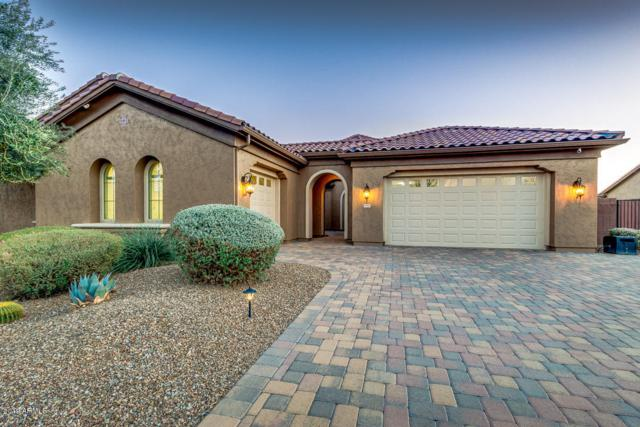 19897 E Russet Road, Queen Creek, AZ 85142 (MLS #5870512) :: Santizo Realty Group