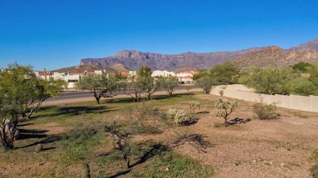 6000 S Kings Ranch Road, Gold Canyon, AZ 85118 (MLS #5870683) :: The Kenny Klaus Team