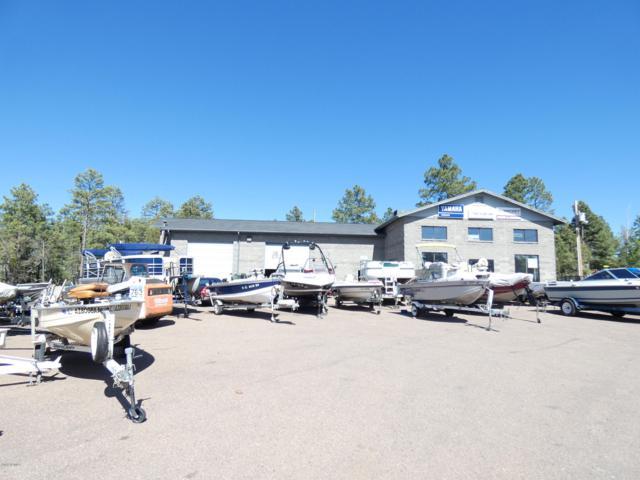 3600 W White Mountain Boulevard, Lakeside, AZ 85929 (MLS #5870825) :: The W Group