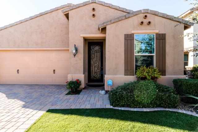 2923 W Thorn Tree Drive, Phoenix, AZ 85085 (MLS #5871265) :: CC & Co. Real Estate Team